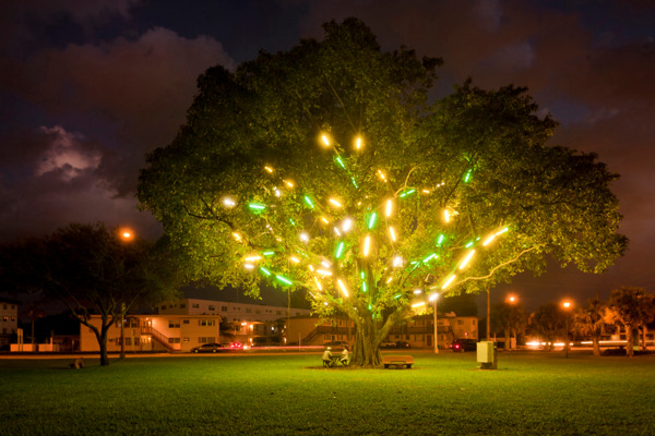 Mark Handforth, Electric Tree, 2011, Fluorescent light fixtures, Dimensions variable, Exterior view 'Rolling Stop', Museum of Contemporary Art, North Miami, 2011