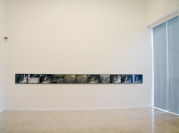 Henrik Håkansson, (Chronicles) Selva Lacandona, 2008, 100 Light-Jet prints, 50 x 50 cm, Installation view 'Novelas de la selva', Museo Tamayo Arte Contemporáneo, Mexico, 2008