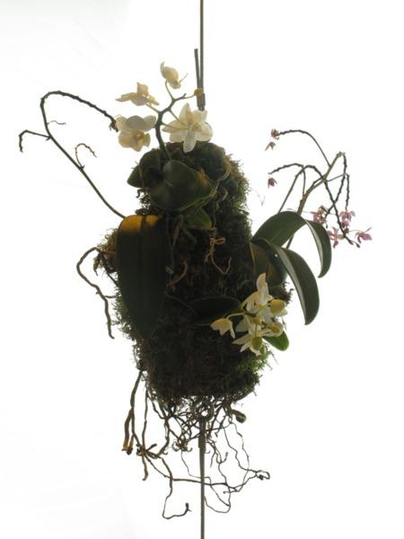 Henrik Håkansson, Broken Forest, 2006 (detail), Orchids, tree barks, cables, HPS-light, humidifier, Dimensions variable