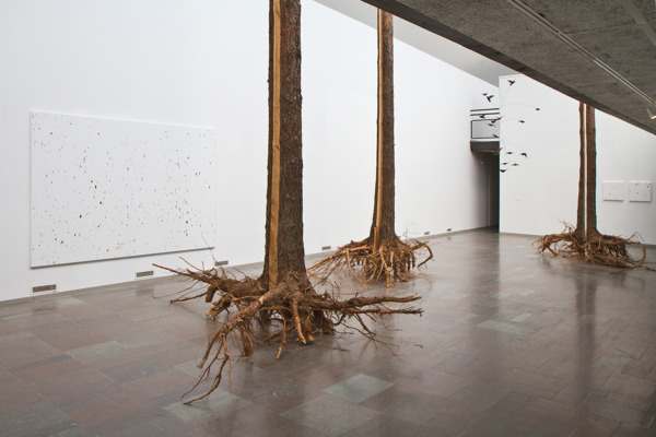 Installation view, 'A Forest Divided', Lunds Konsthall, Lund, 2012
