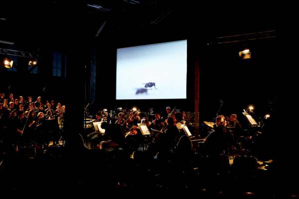 Henrik Hakansson, The End, 2011, Film installation: 35mm projection, 2 monitors, 2 speakers, 5 digital film stills framed, 14 chairs, 21 music stands, Film duration: 12 mins 40 secs looped, Performed at 'You Imagine What You Desire', Sydney Biennale, Sydney, 2014