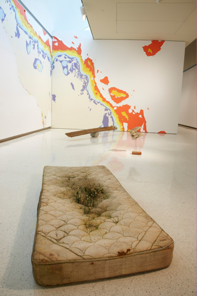 Installation view, 'Life on Mars - 55th Carnegie International', Carnegie Museum of Art, Pittsburgh, 2008