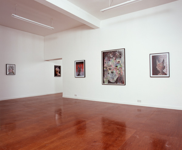 Installation view, The Modern Institute, Glasgow, 2007