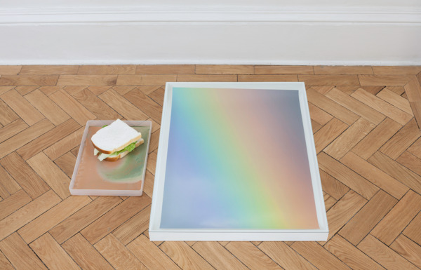 Hayley Tompkins, Digital Light Pool (Earthed), 2014 (detail), Acrylic on six plastic trays, stock photographs, wooden boxes, glass, acrylic paint in plastic bottle, artificial food, Dimensions variable, Installation view, 'Scotland + Venice 2013', Common Guild, Glasgow, 2014