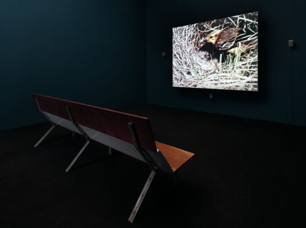 Luke Fowler, All Divided Selves, 2011, Colour and B&W, Surround Sound, Video, Duration 93 min, Edition of 6 + 2 AP