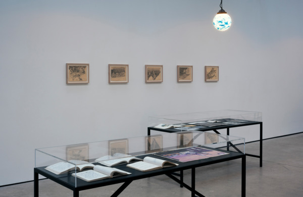 Installation view, 'If you don't like this book you don't like me.', The Modern Institute, Osborne Street, Glasgow, 2012