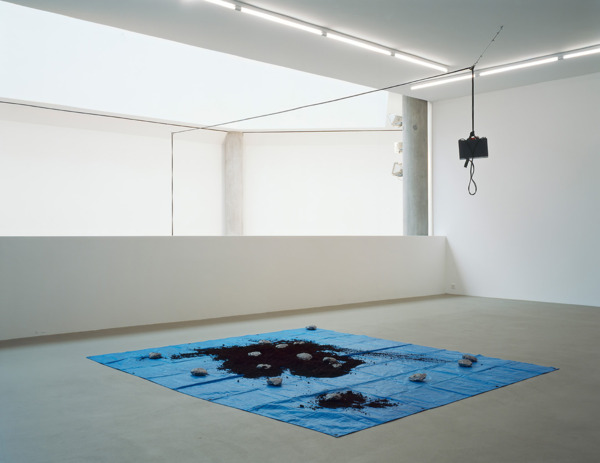 Installation view, 'Cuttings', Museum fur Gegenwartskunst, Basel, 2005