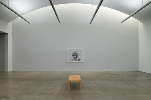 Installation view, Hessel Museum of Art, New York, 2014