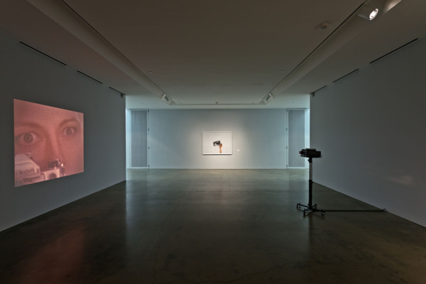 Installation view, Hessel Museum of Art, New York, 2014
