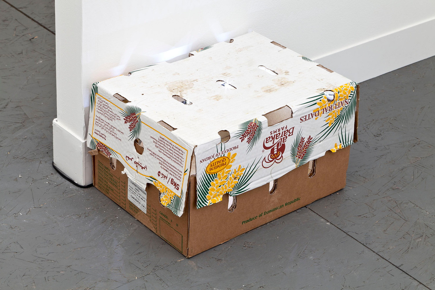 NO, 2013 (with Emanuel Rossetti), Cardboard fruit box, light fitting, 24 x 43 x 29 cm