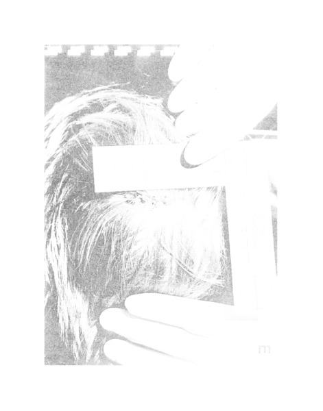 STABILA, 2008 (detail), Giclee photograph, 49 x 39 cm
