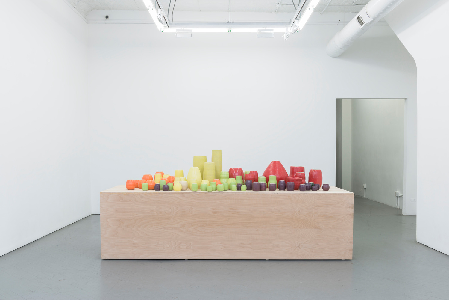 Installation view, Shane Campbell Gallery, Chicago, 2014