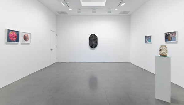 Installation view, Regen Projects, Los Angeles, 2014