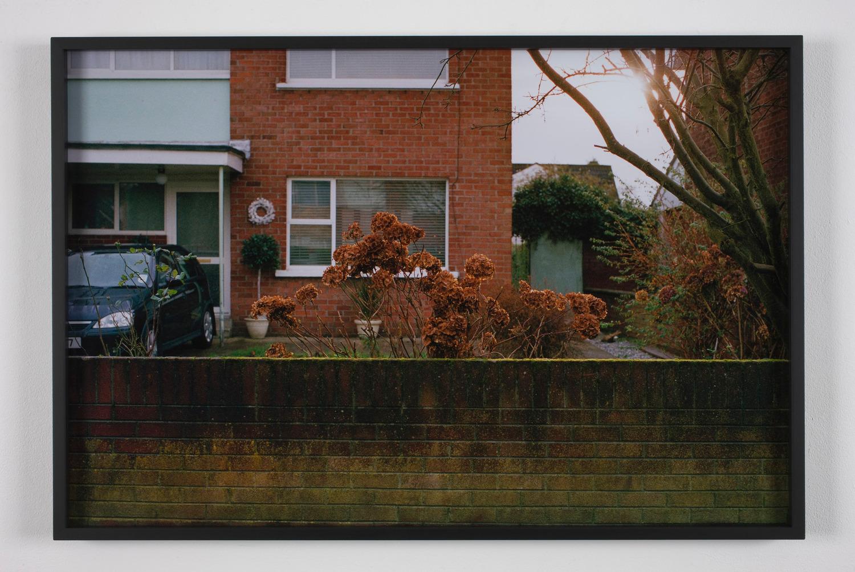 Rockeryeer Hydrangea, 2008, Photographic print, 52 x 77.5 x 38 cm