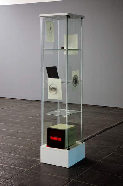 Gefüge, 2009, Glass vitrine, drawings and objects, 165 x 43 x 27 cm