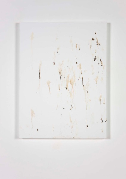 JULY,13.2010 (Delichon erbium), 2010, Canvas and bird drip, 80 x 60 x 4 cm