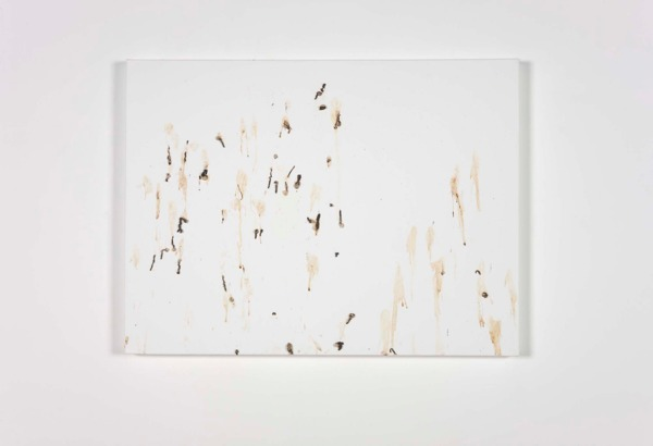 JULY,17.2010 (Delichon erbium), 2010, Canvas and bird drip, 60 x 80 x 4 cm