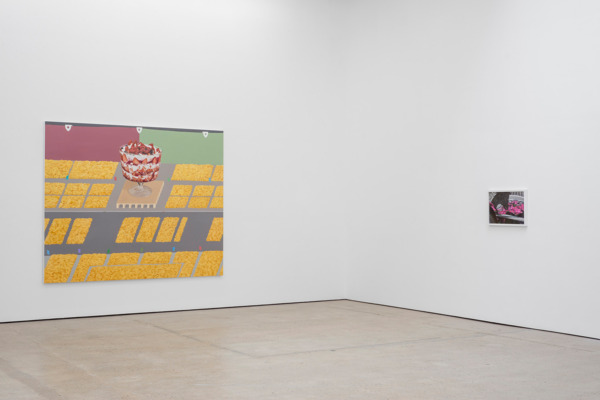 Installation view 'The Scrambled Eggs Salute The Trifle', The Modern Institute, Aird's Lane, Glasgow, 2016