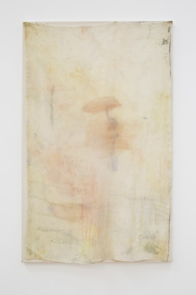 Cathy Wilkes, Untitled, 2016, Oil on cotton, 122 x 76 x 2.5 cm