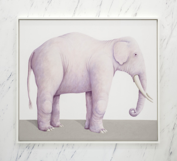Elephant, 2016, Pastel on canvas, 145 x 165 x 7 cm framed, Installation view 'Three Cats', The Modern Institute, Aird's Lane, Glasgow, 2016