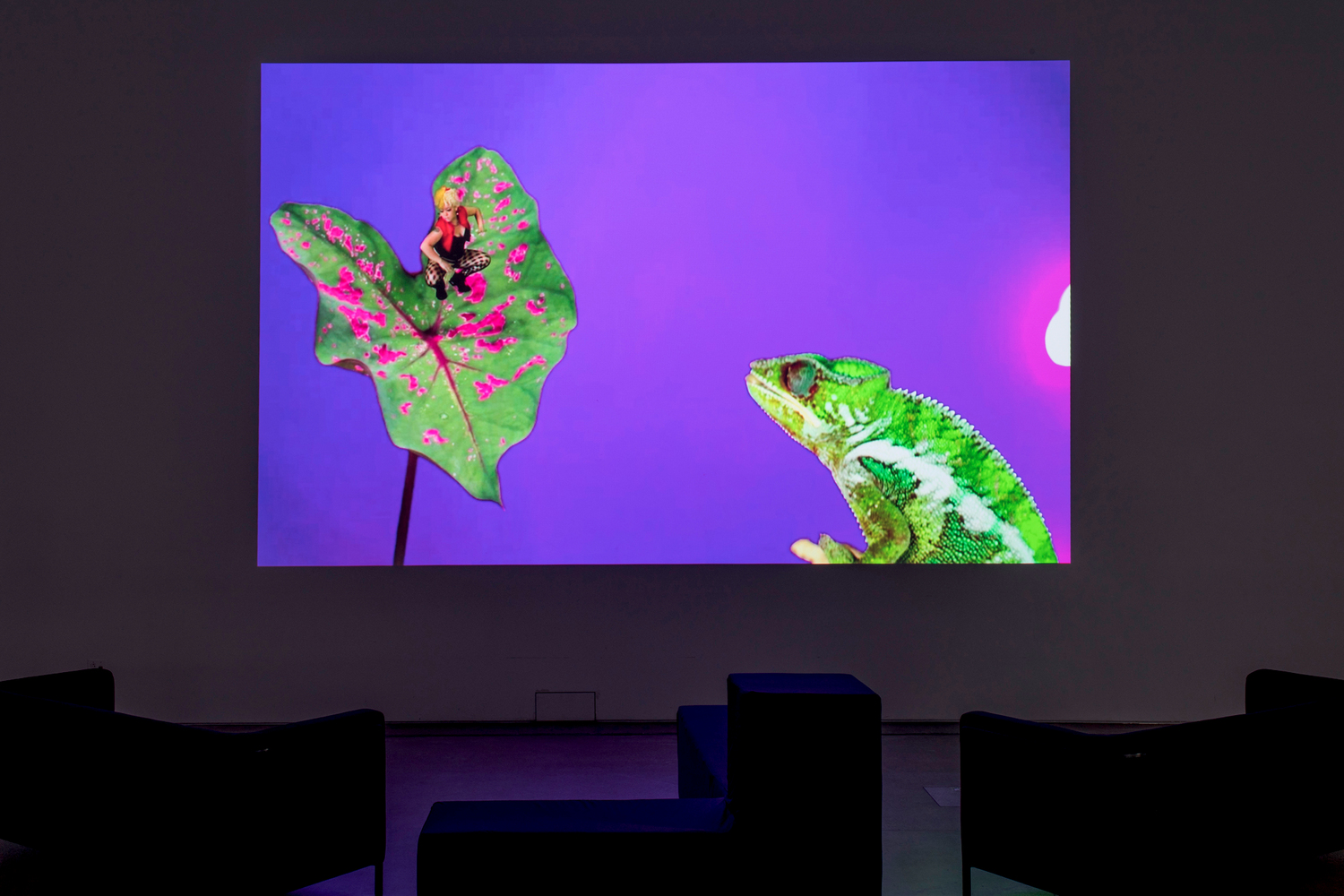 Jeremy Deller and Cecilia Bengolea, Bom Bom's Dream, 2016, HD Video, Duration 12 min 30 sec, Installation view, Jeremy Deller: Video Works,  MOCA, Cleveland, 2017