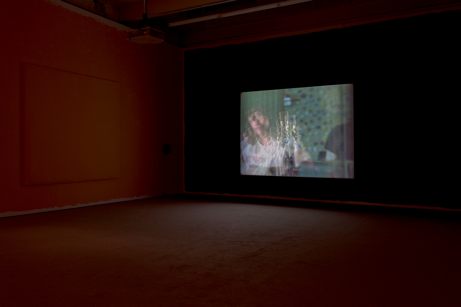 Sue Tompkins, 'Country Grammar' - a film by Luke Fowler, installation view, The Modern Institute, Aird's Lane, 2017
