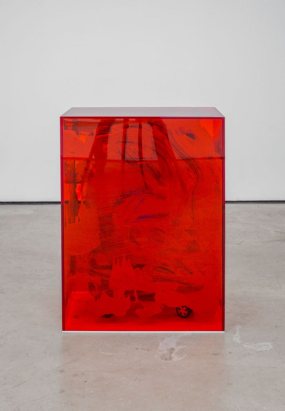 Scott Myles, Mummies (detail), 2014, Suitcase, plastic wrap, perspex, screen-printing ink, 8 unique elements, Dimensions variable