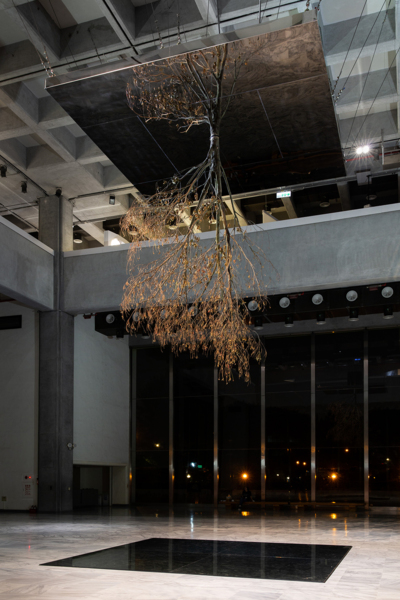 Inverted Tree (Reflected), 2018, Elaeocarpus sylvestris, steel, mirror glass, stainless steel, steel wire, wooden panel, hygrometer, irrigation system, Dimensions variable, Installation view 'Taipei Biennial 2018 Post-Nature A Museum as an Ecosystem', Taipei Fine Arts Museum, Taipei, 2018